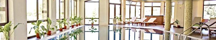 Hotels in Dobrinishte - SPA Hotels - Mineral water